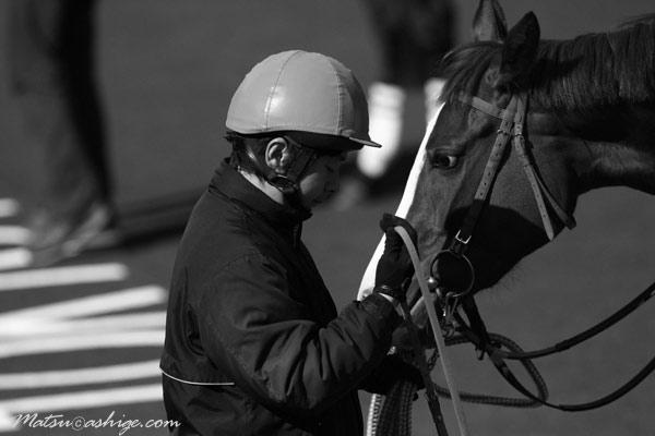 サンタイコウ 2010 東京競馬場