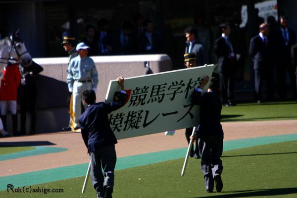 2012 東京競馬場