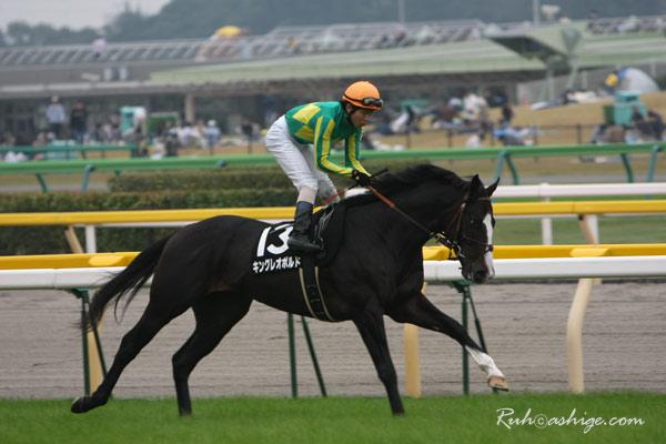 キングレオポルド 2009 東京競馬場