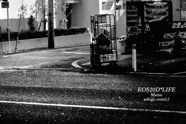 EOS20D*LIFE   2013