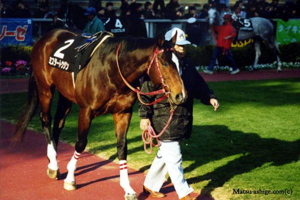 ミスタートウジン 2000年 東京競馬場