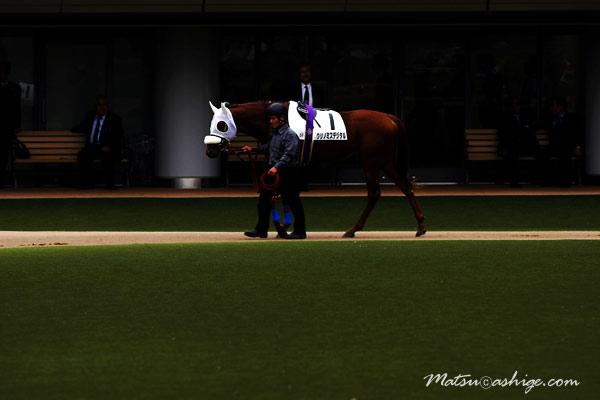 クリノミスデジタル 2009 東京競馬場