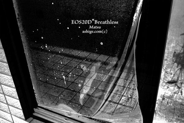 2013 20D*Breathless