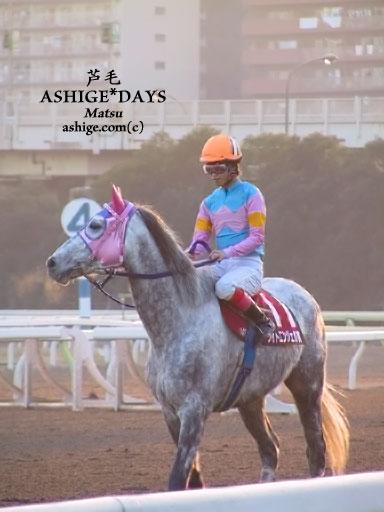 シルバーダマシイ ASHIGE*DAYS 2002 TCK