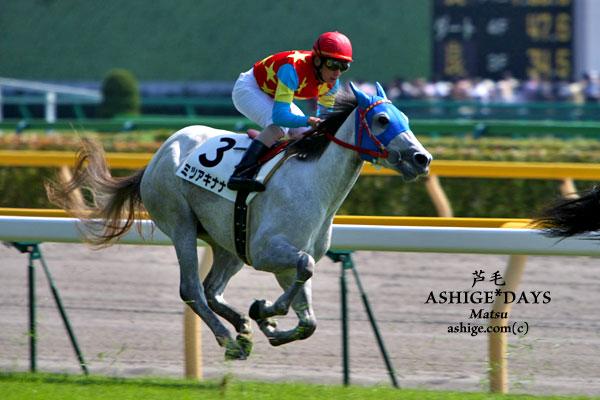ミツアキナナ ASHIGE*DAYS 2007 東京競馬場