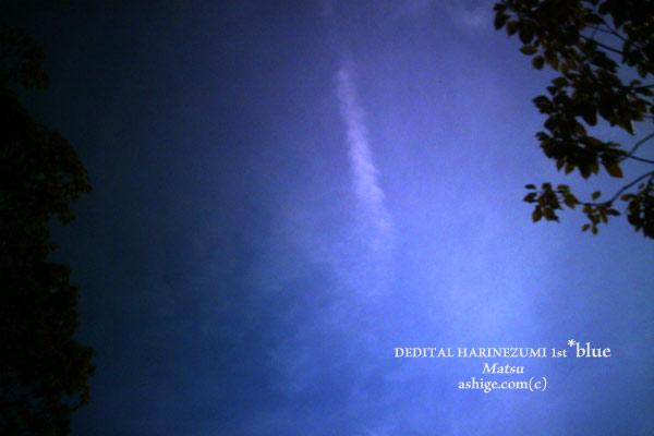 DEDI-HARI*Blue 2014
