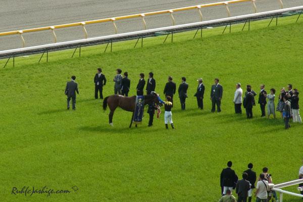 アパパネ 2011 東京競馬場