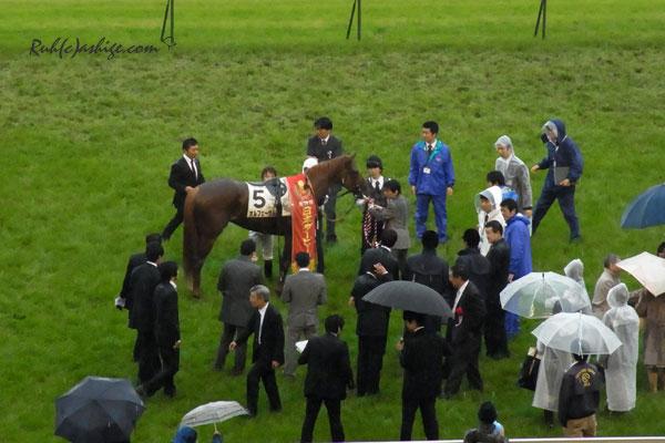 オルフェーヴル 2011 東京競馬場