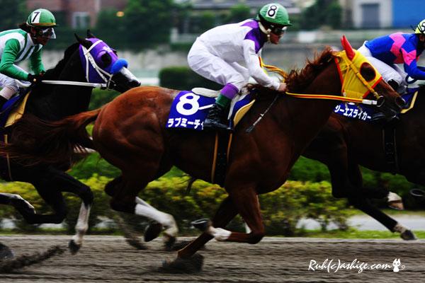 ラブミーチャン 2011 浦和競馬場