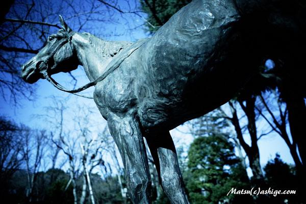 トキノミノル像 2014 東京競馬場
