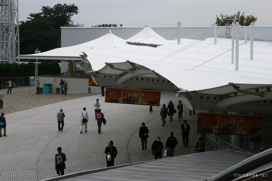 2013 東京競馬場