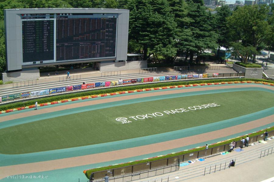 東京競馬場 2016