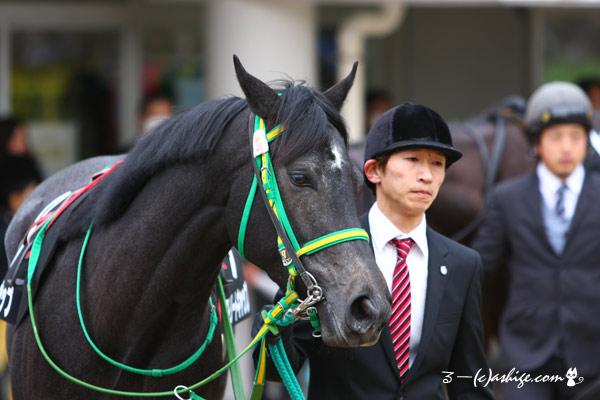 ストリートキャップ 2015 中山競馬場