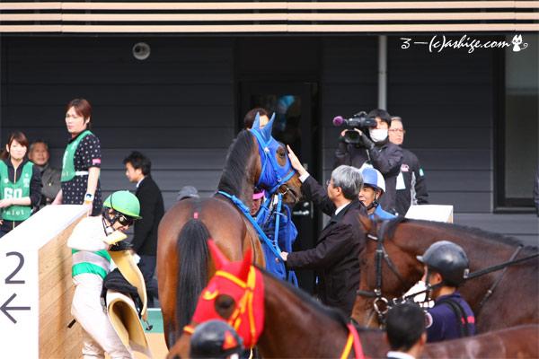 ギンガ 2015 中山競馬場