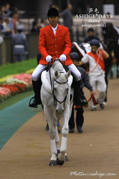 ニコラスベル 2009 東京競馬場
