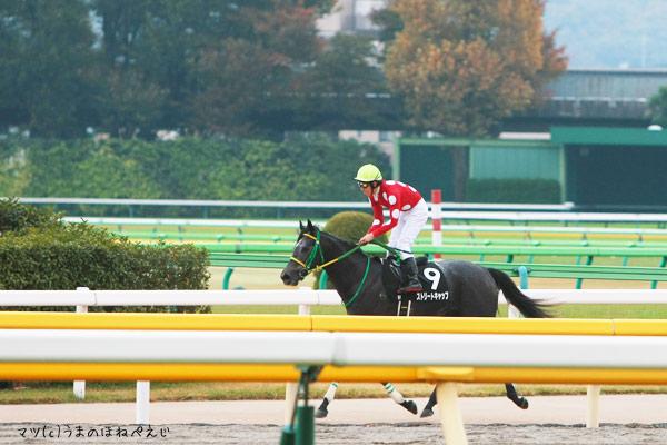 ストリートキャップ 2015 東京競馬場