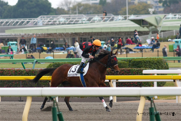 コンドルヒデオ 2015 東京競馬場