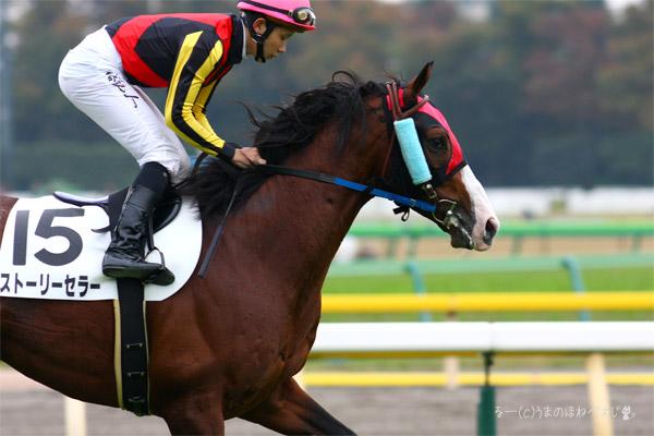 ストーリーセラー 2015 東京競馬場