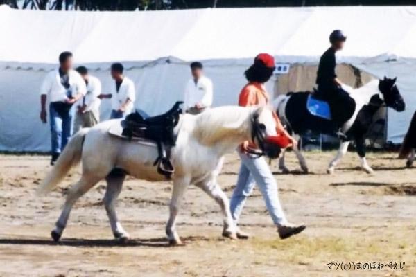 ナリタブラリアン 2004