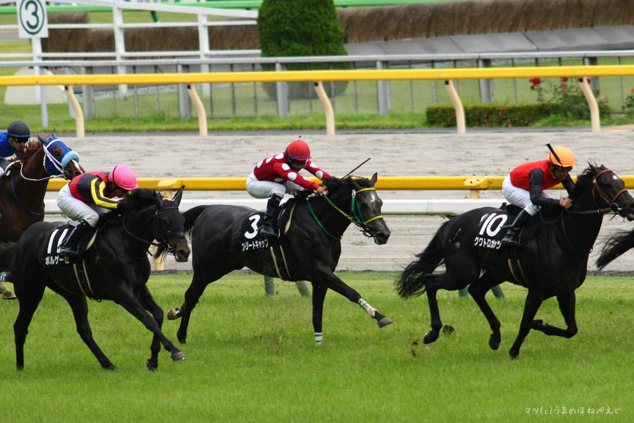 ストリートキャップ 2016 東京競馬場